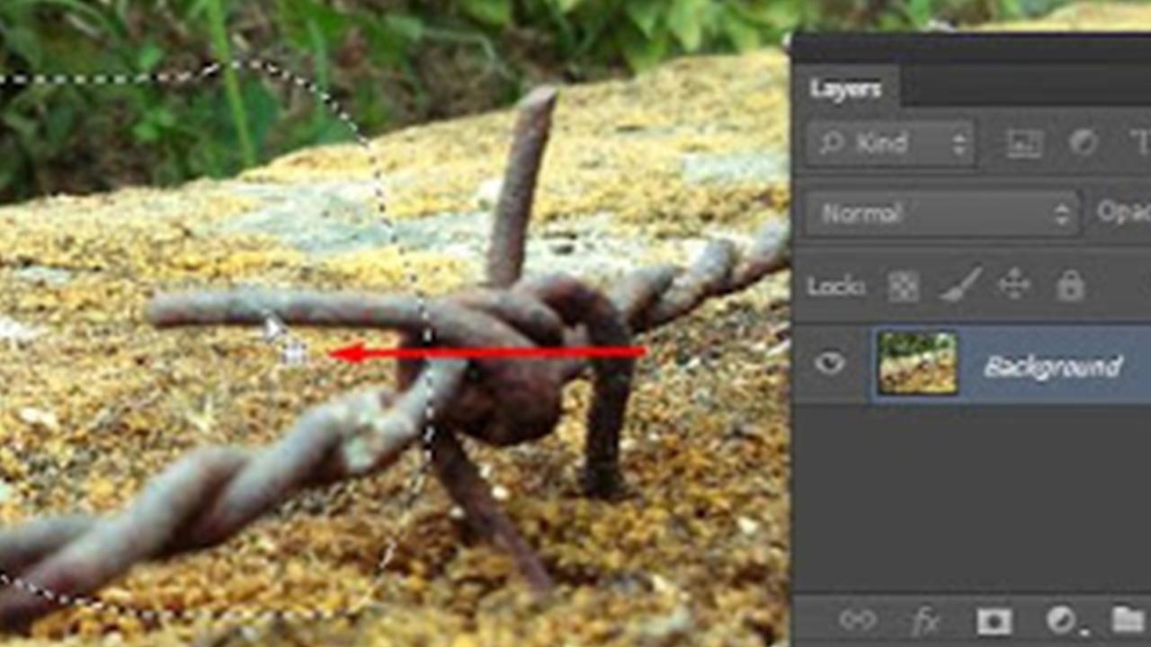 Cara Menggunakan Lasso Tool Pada Adobe Photoshop Untuk Pemula