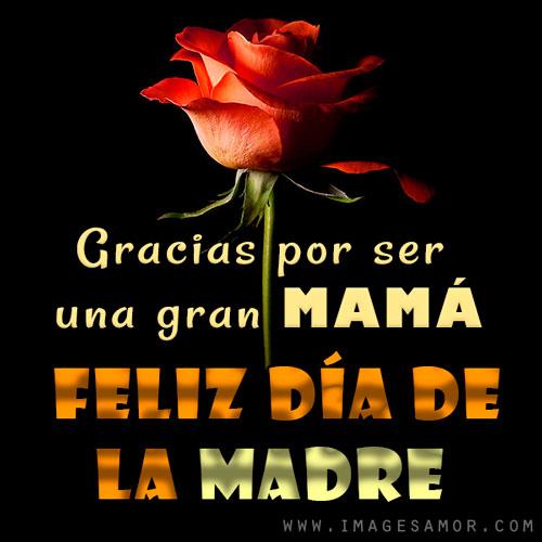 Imágenes bonitas de feliz día de la madre con rosas