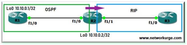 Redistribute OSPF into RIP
