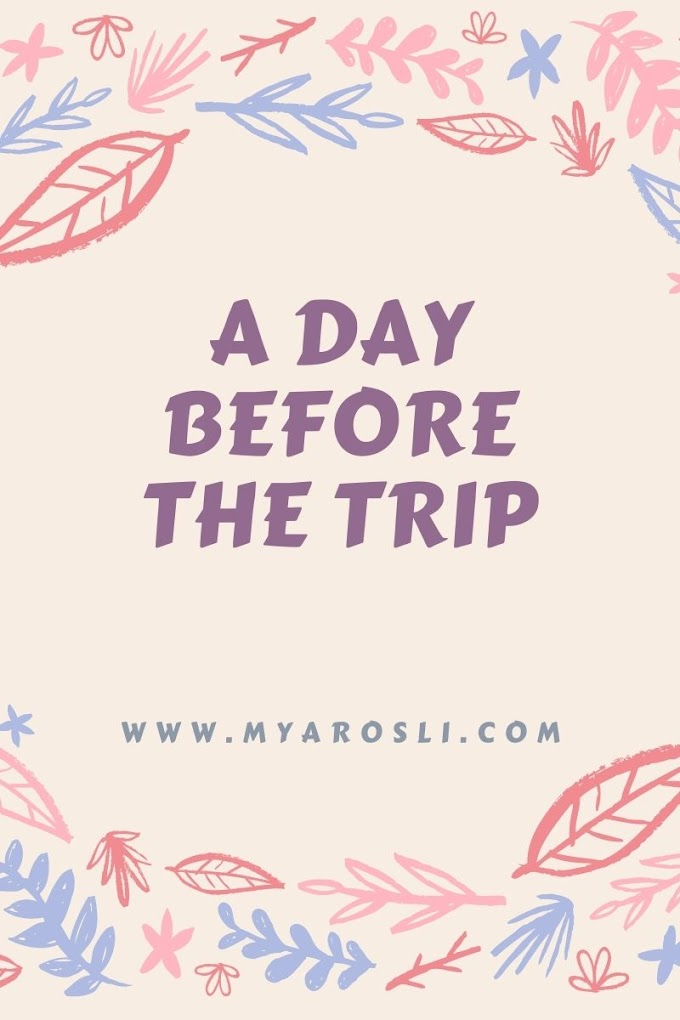 A Day Before The Trip
