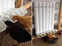 45+ kreatifitas menggunakan pipa PVC di rumah dan Taman Anda
