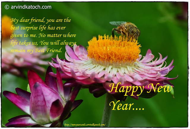 Dear Friend, Friend, best surprise, Life, Happy New Year, New Year card,