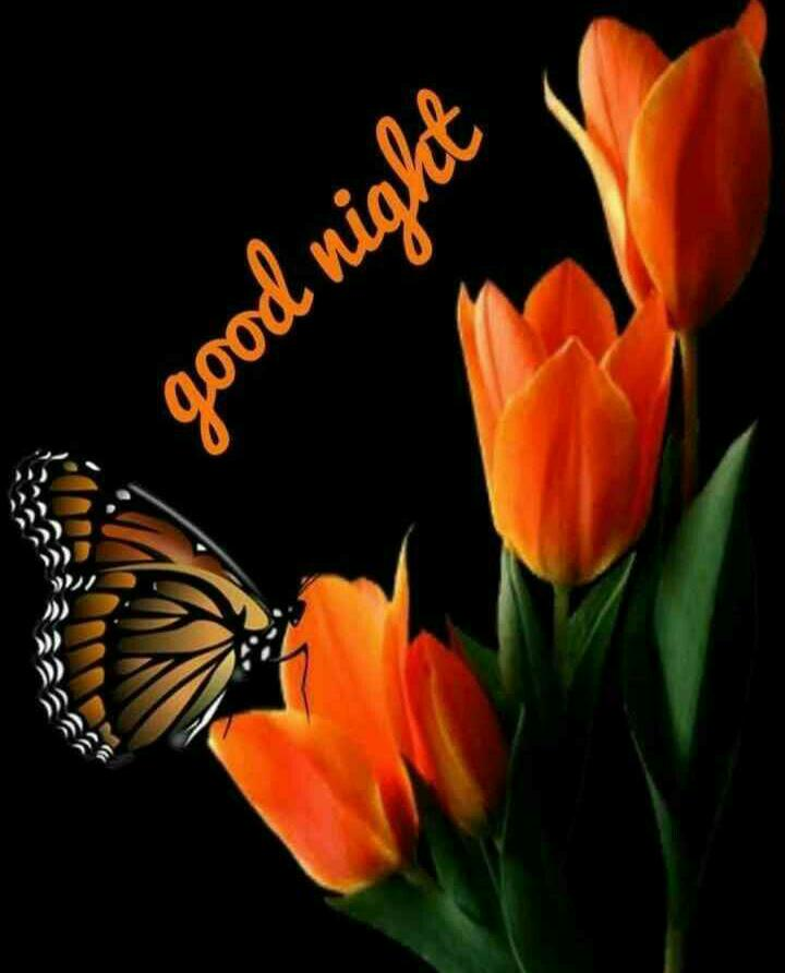 Good Night Images For Whatsapp Free Download Hd Wallpaper Pictures Photos Of Good Night Mixing Images