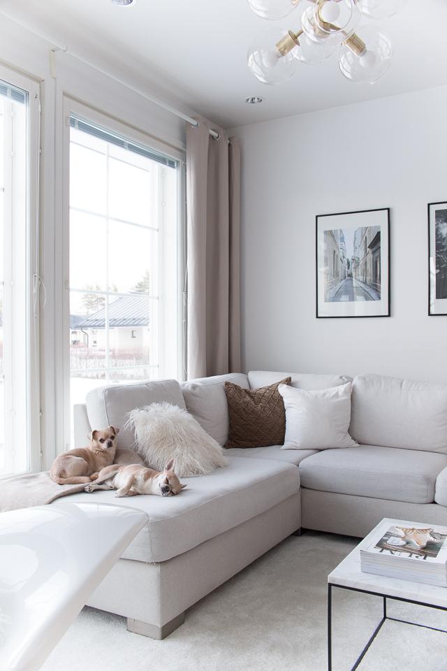 Villa H, olohuone, sisustus, koirat, koti, arki, rutiinit