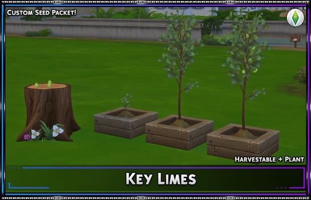 Harvestable: Key Limes