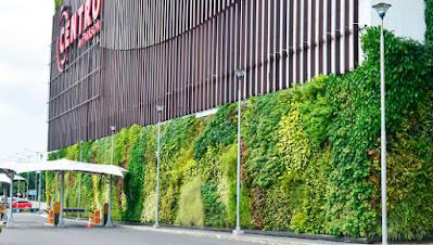 taman vertikal - living wall