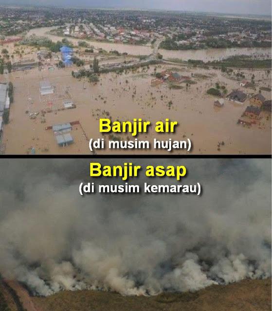 Naniek S Deyang: Pengusaha Yang Datangkan Bencana, Duitnya Disimpan di LN, Sementara Rakyat Mendapat Banjir dan Asapnya