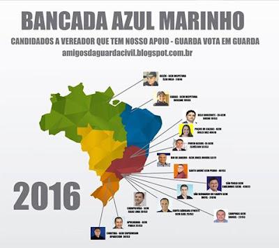Melhore a segurança pública de sua cidade eleja vereadores da bancada Azul Marinho
