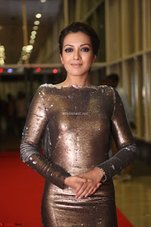 Actress Catherine Tresa in Golden Skin Tight Backless Gown at Gautam Nanda music launchi ~ Exclusive Celebrities Galleries 068.JPG