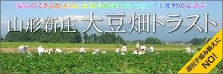 http://daizubatake.sakura.ne.jp/