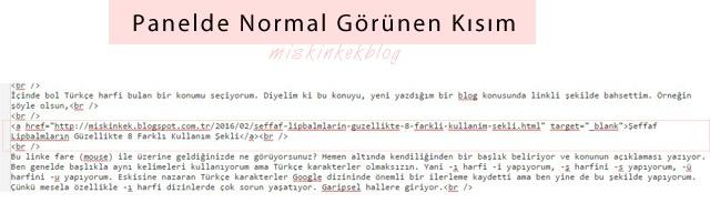 blog-tuyolari-dogru-linklendirme-nasil-yapilir