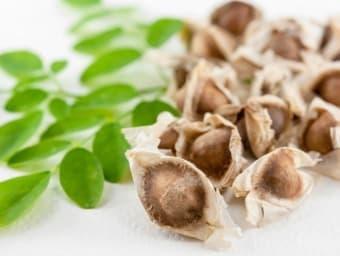 medcina alternativa remedios caseros planta medicinale