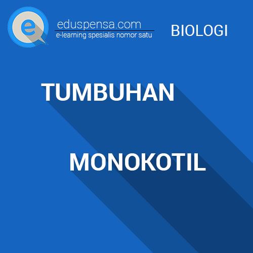 Pengertian, Ciri-ciri dan Contoh TUmbuhan Monokotil