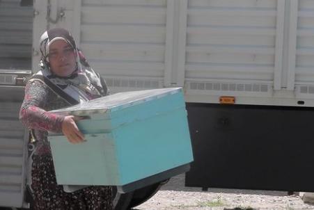 Η Τουρκία στηρίζει τις γυναίκες μελισσοκόμους