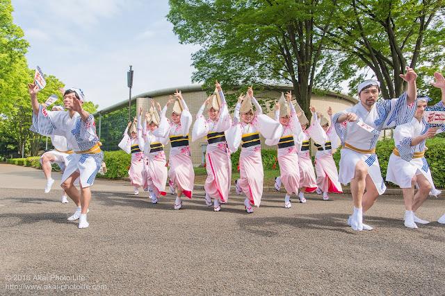 紅連の阿波踊りの舞台構成を小金井市体育館前で撮影した写真