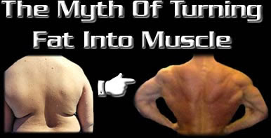How To Turn Fat To Muscle 114