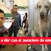 (SE BUSCA) Gerente De 'Soriana' De Una Patada Le Rompe La Quijada A Un Cachorro Indefenso.