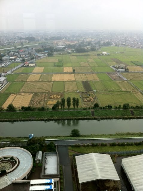 こしがや田んぼアート2010ガーヤちゃん(収穫祭)