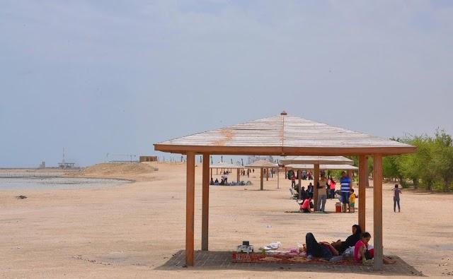 Best Beaches to Visit in Qatar