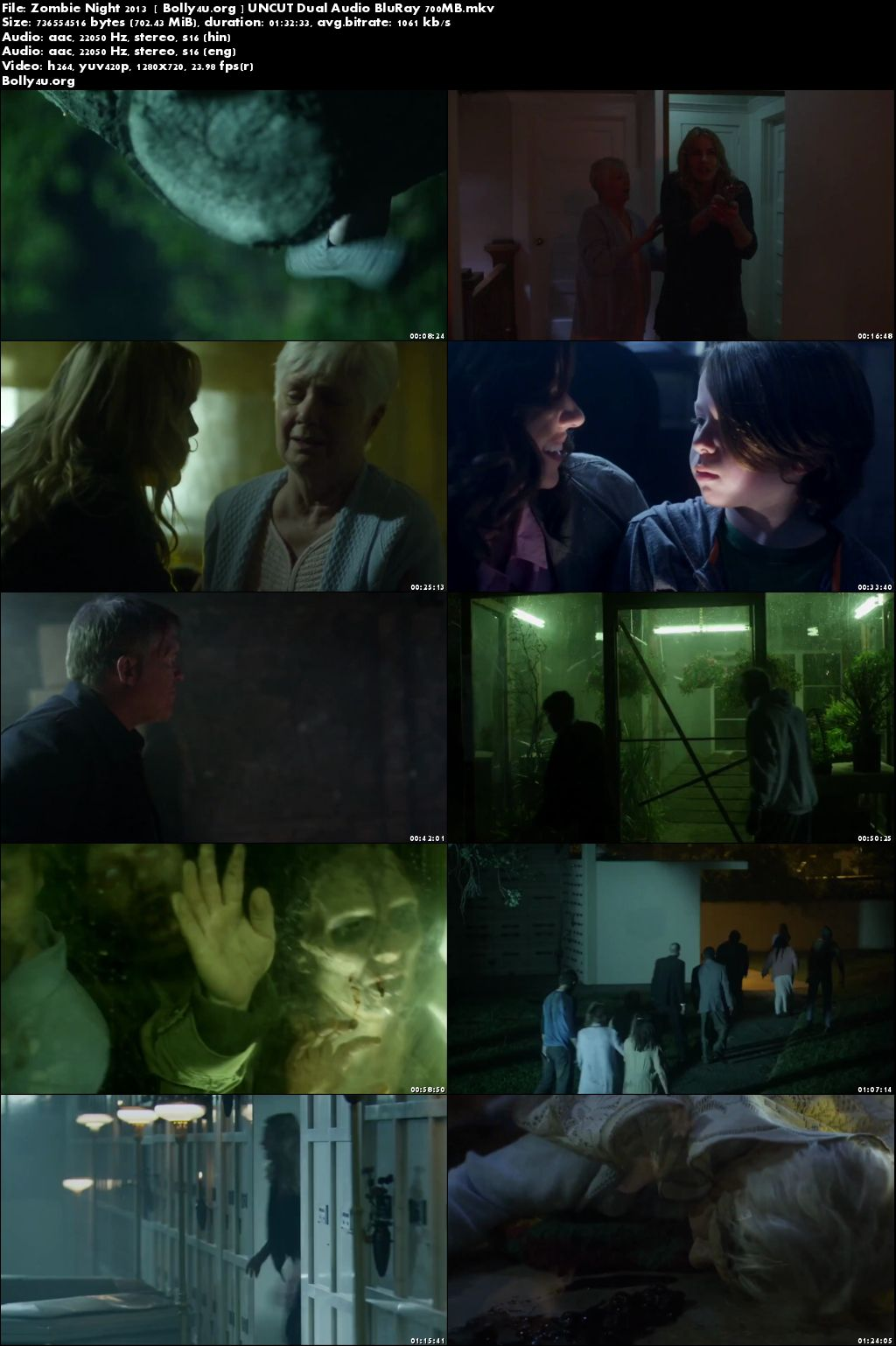 Zombie Night 2013 BRRip 700MB Hindi Dubbed UNCUT Dual Audio 720p Download