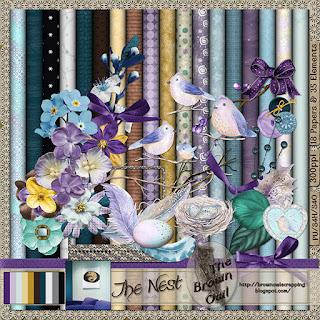 The Nest kit