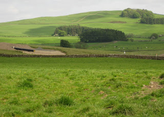 Gas pipeline being laid through fields, Galloway, Scotland