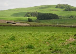 Gas pipeline being laid through fields, Galloway, Scotland