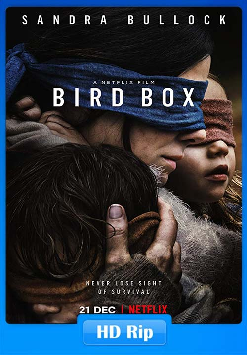 Bird Box 2018 720p WEBRip x264 | 480p 300MB | 100MB HEVC