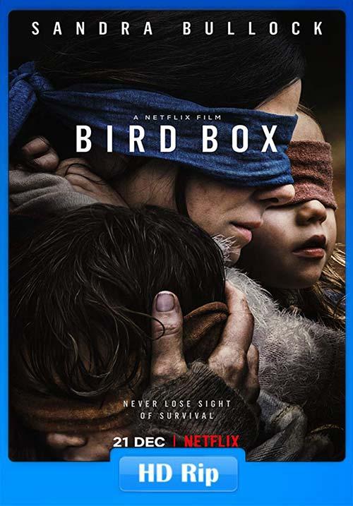 Bird Box 2018 720p WEBRip x264 | 480p 300MB | 100MB HEVC Poster