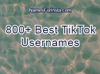 800 Best Tiktok Usernames 2020