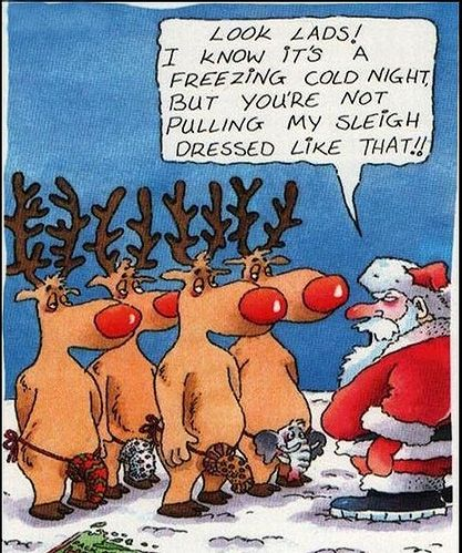 christmas funny pictures