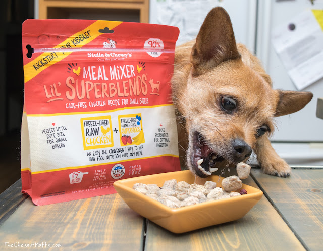 Mini Review: Stella & Chewy's Meal Mixer Lil' Superblends Dog Food Topper