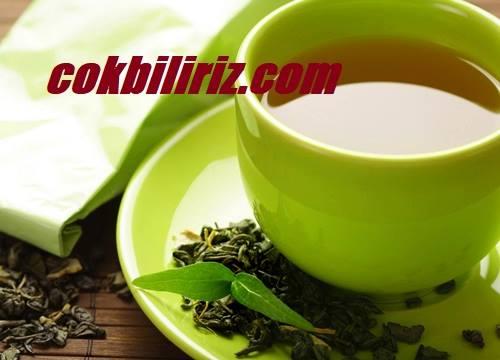 Yeşil Çayın Faydaları ve Zayıflamaya Etkisi