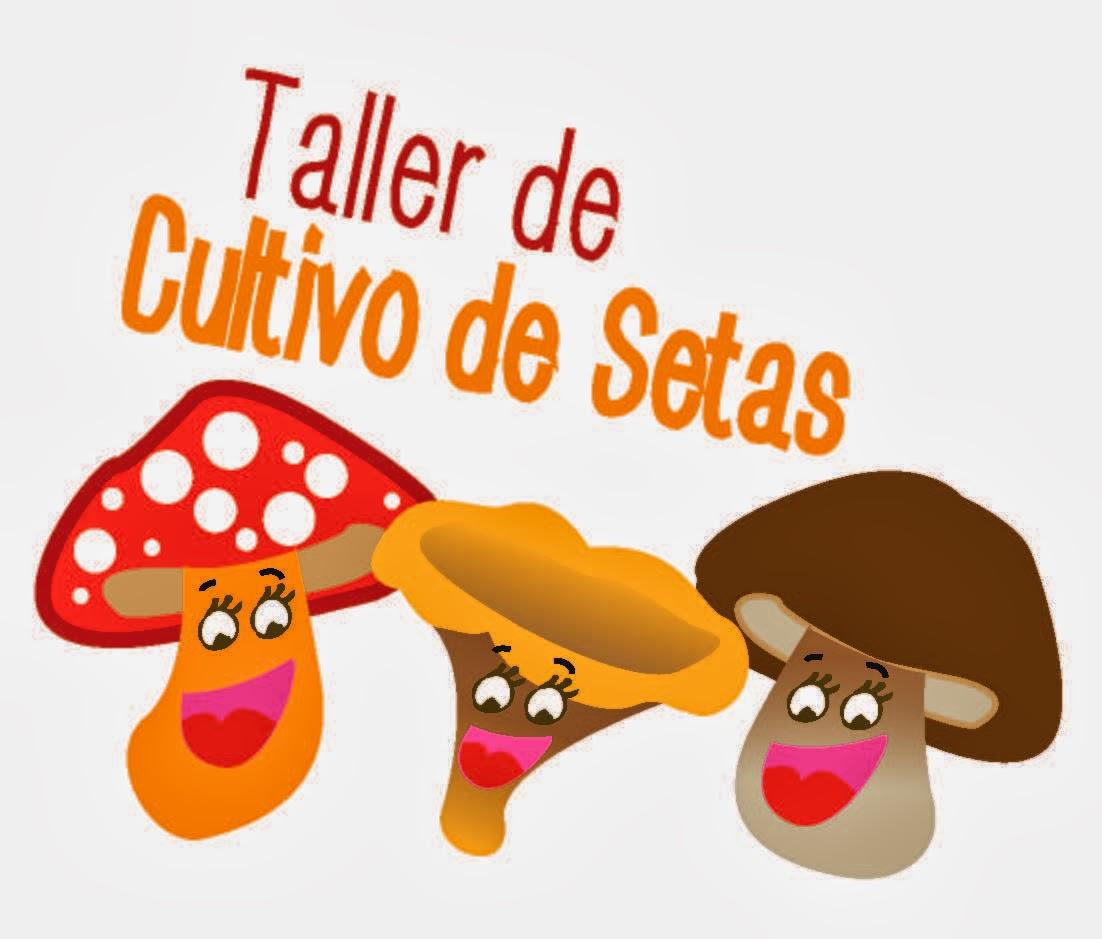 TALLER DE CULTIVO DE SETAS EN CASA