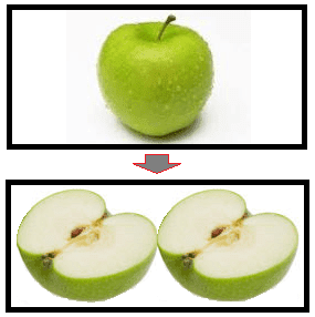 pecahan buah apel www.simplenews.me