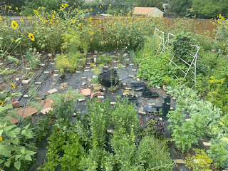 Urban Farm Aerial View