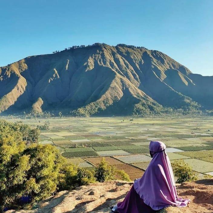 Taman Wisata Pusuk Sembalun Tempat Wisata lombok paling nyaman