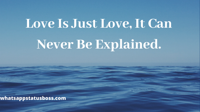 Love Is Just Love, It Can Never Be Explained