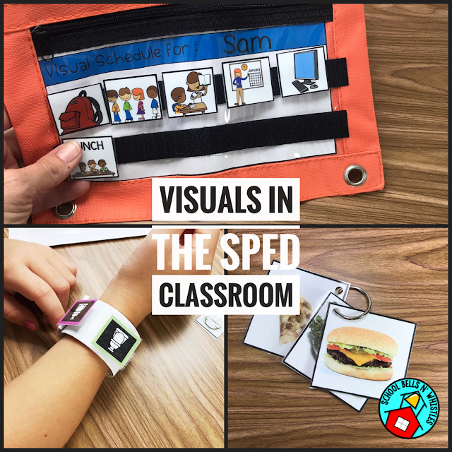 VISUALS IN SPECIAL EDUCATION