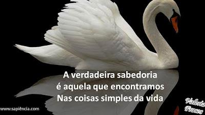 A verdadeira  sabedoria é  aquela que  encontramos nas  coisas simples da vida