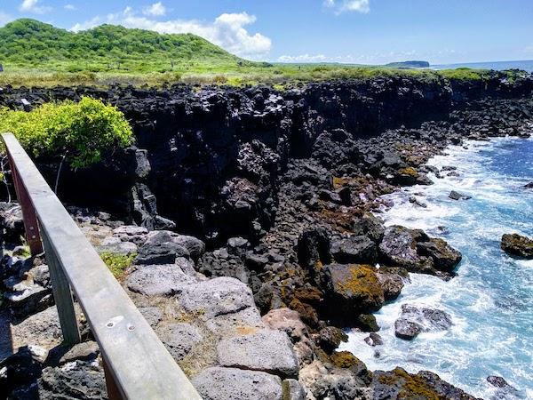 Galapagos La Loberia