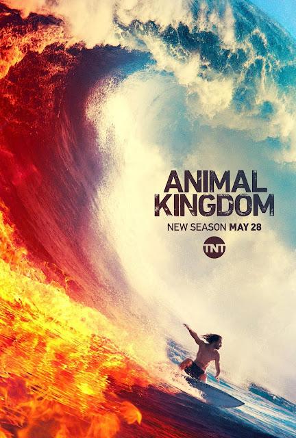 Animal Kingdom - Temporada 4 [En emisión]