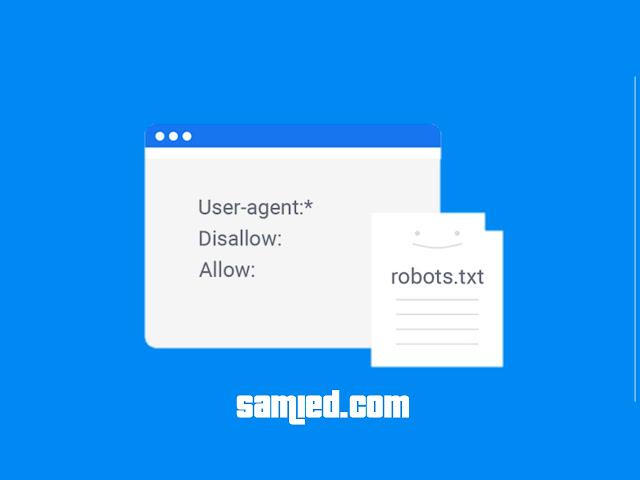 setting robot txt yang aman