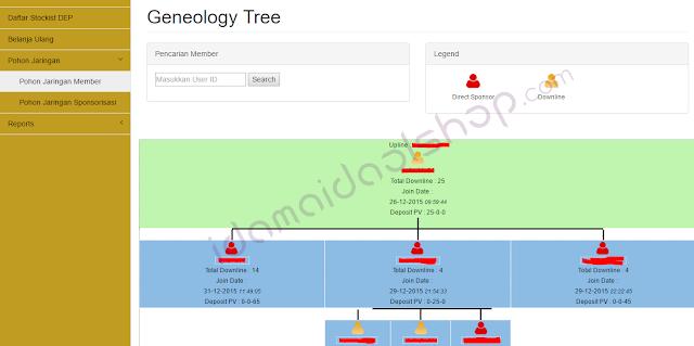 pohon jaringan member
