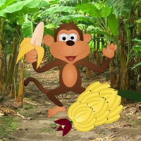 G2R Feed The Hungry Monkey