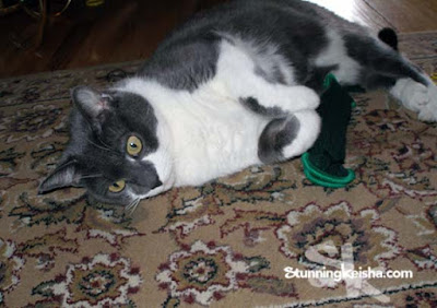 Feral Flashback Friday: Tickle Me Keisha