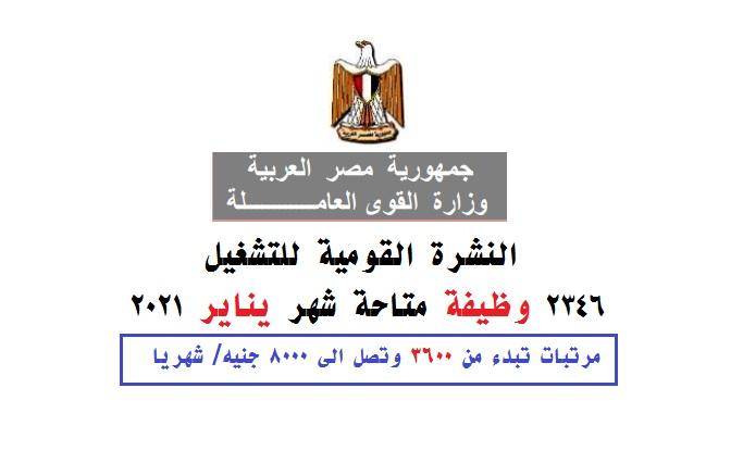 وظائف وزارة القوى العاملة نشرة تشغيل يناير 2021 - 2346 وظيفة وفرصة عمل