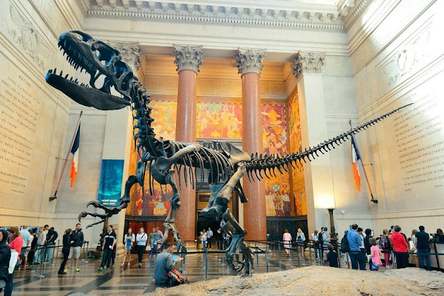 American Museum of Natural History em Nova York