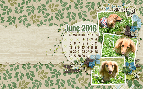 May 2016 Desktop Challenge
