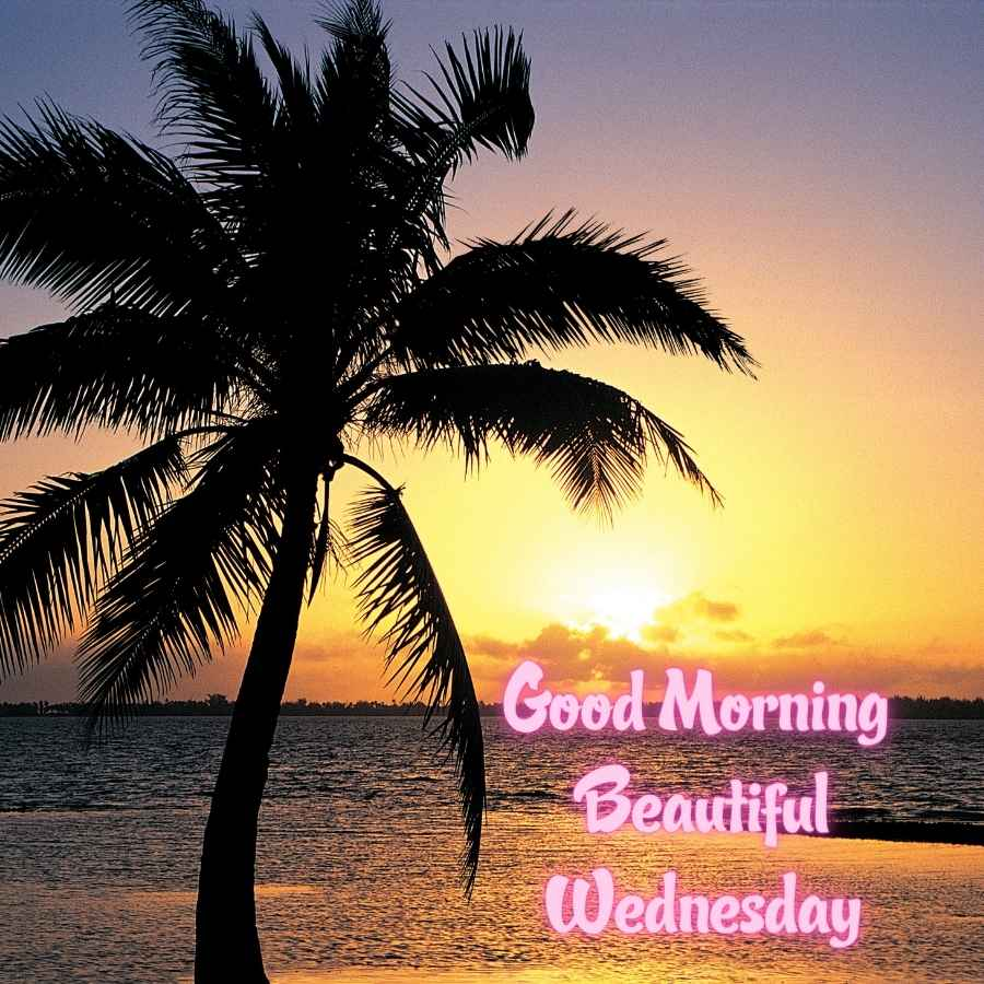 good morning images of wednesday